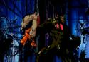 Bio Broly attacks Krillin using Goten