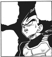 Vegeta can't believe Piccolo's power