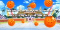 The Junior Champ is Finally Decided! Who Will Fight Against Mr. Satan?