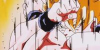 Goku vs Cell Gallery