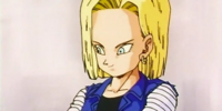 What did you like about Android 18?