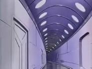Hallways in Kassava