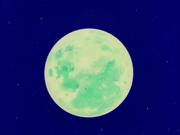 Moon(DBZ)
