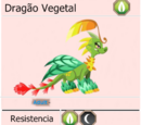 Dragão Vegetal