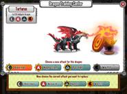 Hellgate Dragon Training Center