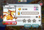 Adult Amber dragon