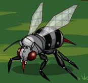 Beebotos8