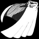 Whitecloak