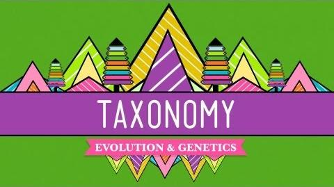 Taxonomy Life's Filing System - Crash Course Biology 19