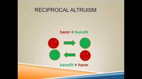 What is reciprocal altruism-1380836163