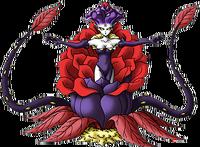 DQMSL - Black rose