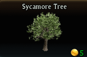 File:Sycamore Tree.png