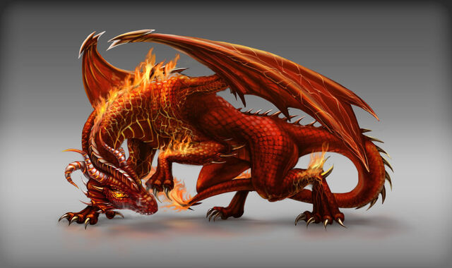 File:Fire dragon game npc design by fallfox-d7ic753.jpg