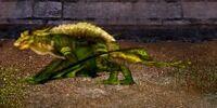 Emerald Sapwing Dragon