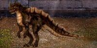 Savage Raptor Dragon