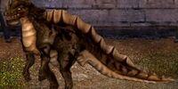 Puny Flecked Raptor Dragon