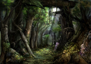 Forests wallpapers 316