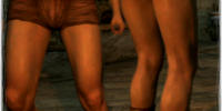 Scale Greaves