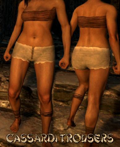 File:Armour Legs Cassardi Trousers.png