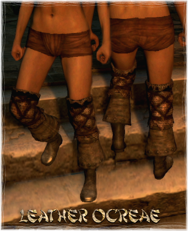 File:Armour Legs Leather Ocreae.png