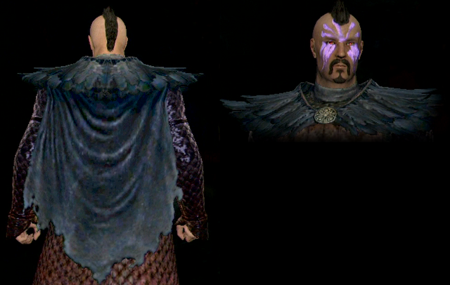 File:Feather Cape.png