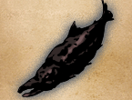 File:Giant Rotten Fish.png