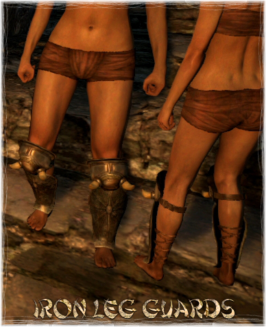 File:Armour Legs Iron Leg Guards.png
