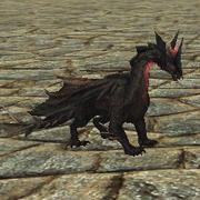 Companion Runewake
