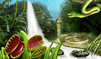 File:Krakesh-rainforest.jpg