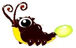 Firefly Dragon Baby