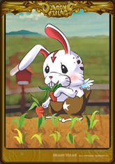Card rabbit