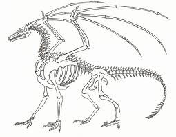 File:European Dragon Skeleton.jpg