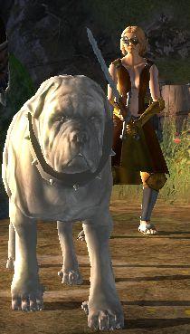 Orkischer Kampfhund