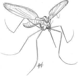 File:Mosquito, Monstrous.jpg