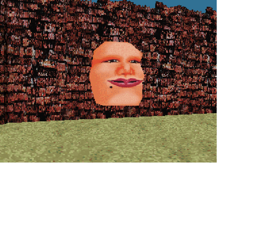 File:Wall Head.png