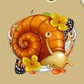 Coll underground snail