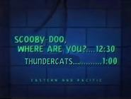 UToons TV next bumper scooby doo thundercats