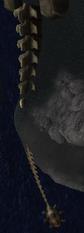 Rd skull 6