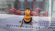 Bee-movie-disneyscreencaps com-2494