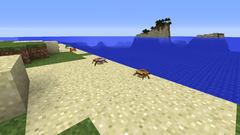 Crabs on island