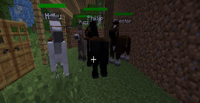 File:Horse Screenshot.png