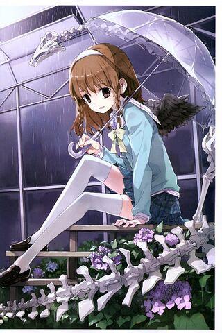 File:Sora UMB.jpg