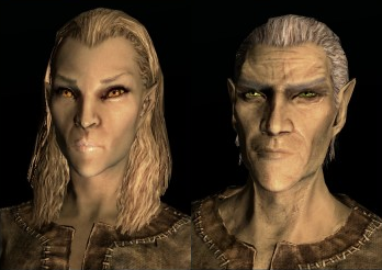 File:Race altmer.png