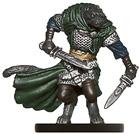 Rakshasa Assassin