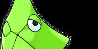Metapod (3.5e Monster)