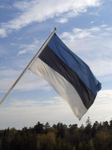 File:Estonian flag.jpg
