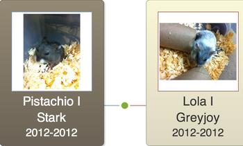 Pistachio I Stark Family Tree
