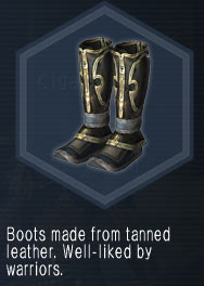 CombatBoots