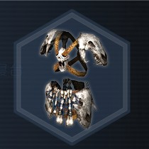 Bone Armor C