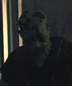 File:Dying light marks brother.png